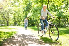 Senior Couple Riding Bikes. In Park royalty free stock images