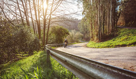Senior couple riding motorbike along forest road Royalty Free Stock Photography