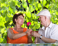 Senior couple romance Stock Photography
