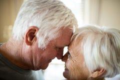 Senior couple romancing in bedroom Stock Photos
