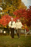 Senior couple running in park. Senior couple running in casual clothing in park Royalty Free Stock Image