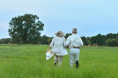 Senior couple running at   field. Happy senior couple running at summer field Royalty Free Stock Images