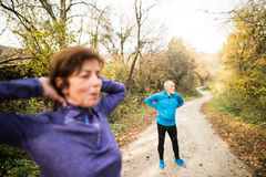 Senior couple running outside in sunny autumn forest, stretching. Beautiful active senior couple running together outside in sunny autumn forest, stretching Royalty Free Stock Images