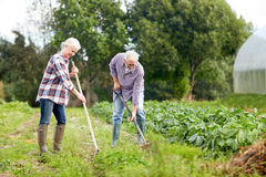 Senior couple with shovels at garden or farm Royalty Free Stock Photography