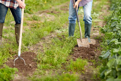 Senior couple with shovels at garden or farm Royalty Free Stock Images