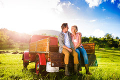 Senior couple sitting in back of red pickup truck. Senior couple sitting in back of vintage red pickup truck, hugging, green sunny nature Stock Image