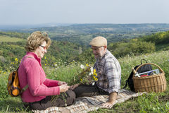 Senior couple sitting in the field Stock Photography