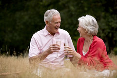 A senior couple sitting on the grass, drinking champagne stock photography
