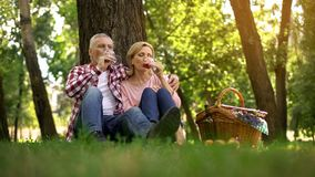 Senior couple sitting on grass and drinking wine, romantic date, anniversary royalty free stock photos