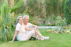 Senior couple sitting Royalty Free Stock Images