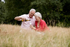 A senior couple sitting on the grass, man pouring champagne stock photography