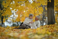 Senior Couple Sitting In Autumn Park Royalty Free Stock Photos