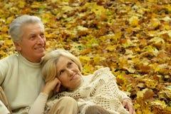 Senior couple sitting on leaves Stock Images