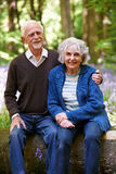 Senior Couple Sitting On Log In Bluebell Wood Royalty Free Stock Photos