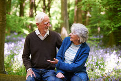 Senior Couple Sitting On Log In Bluebell Wood Royalty Free Stock Images