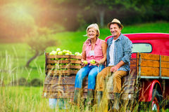 Senior couple sitting in pickup truck, apple harvest. Senior couple sitting in back of vintage red pickup truck, after harvesting apples Royalty Free Stock Images