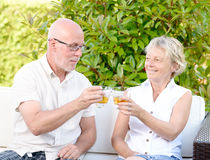 Senior couple sitting in a sofa with glass. Senior couple sitting in a sofa with a glass in hand royalty free stock image