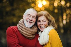 A senior couple standing in an autumn nature at sunset, hugging. A cheerful senior couple in love standing in an autumn nature at sunset, hugging royalty free stock photo