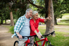 Senior couple standing with bicycle in park. On a sunny day Stock Image