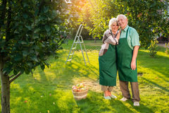 Senior couple standing on grass. Stock Image