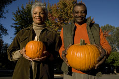Senior couple standing side by side, holding pumpkins, smiling, front view, portrait Royalty Free Stock Photography