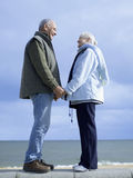 Senior Couple Standing On Wall By Water Holding Hands. Full length side view of romantic senior couple standing on wall by water holding hands Stock Image