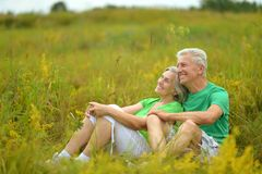Senior couple in summer field Royalty Free Stock Photos