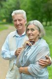 Senior couple in summer park Royalty Free Stock Photo