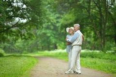 Senior couple in summer park Royalty Free Stock Photo