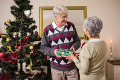 Senior couple swapping gifts by their christmas tree Royalty Free Stock Photos