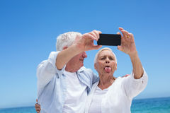 Senior couple taking a selfie and grimacing Royalty Free Stock Photography