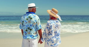 Senior couple talking while holding hands stock video footage