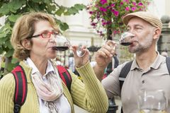 Senior couple tasting wine Stock Photos