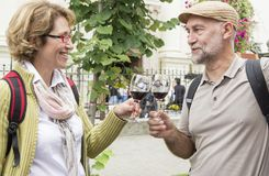 Senior couple tasting wine Royalty Free Stock Photo