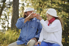 Senior couple toast each other Royalty Free Stock Photography