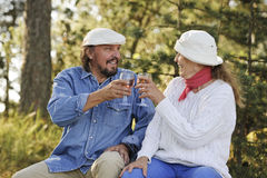 Senior couple toast each other Royalty Free Stock Images