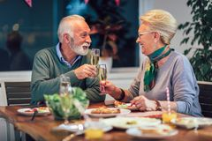 Senior couple toasting wine at home royalty free stock image
