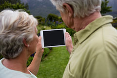 Senior couple using digital tablet Royalty Free Stock Photography