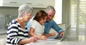 Senior couple using a laptop stock footage