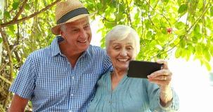 Senior couple using smartphone stock video footage