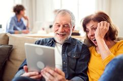 Senior couple using tablet in community center club. Senior couple using tablet in community center club, technology in everyday life concept royalty free stock photos
