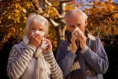 Senior couple using tissues Royalty Free Stock Photo