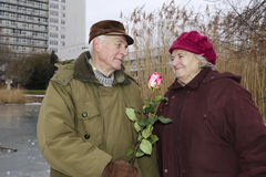 The senior couple on Valentines day Royalty Free Stock Photography