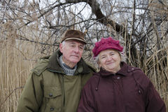 The senior couple on Valentines day Royalty Free Stock Images