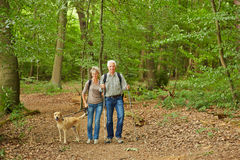 Senior couple waking the dog in a forest Royalty Free Stock Photos