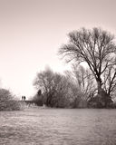 Senior couple on a walk along the riverside Royalty Free Stock Photo