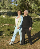 Senior couple walking Stock Photography
