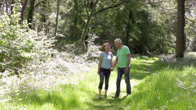 Senior Couple Walking Along Summer Woodland Path Together stock footage