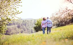 Senior couple walking arm in arm outside in spring nature. Stock Photos