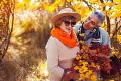 Senior couple walking in autumn forest. Middle-aged man and woman hugging and chilling outdoors royalty free stock photos